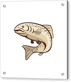 Rainbow Trout Jumping Cartoon  Acrylic Print