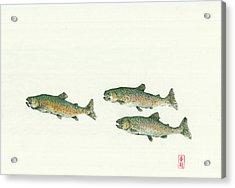 Rainbow Trout School Gyotaku Acrylic Print