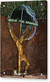 Acrylic Print featuring the photograph Rainforest Appeal by David Nicholls