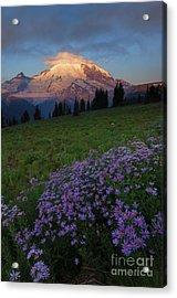 Rainier Morning Cap Acrylic Print by Mike  Dawson