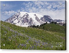 Rainier's Wildflowers Acrylic Print