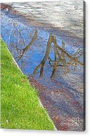 Rainy Day Aftermath Acrylic Print by Ann Horn