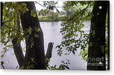 Rainy Day At The River Acrylic Print by Lisa Gifford