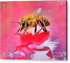 Rainy Day Bee Acrylic Print