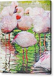 Rainy Day Flamingos 2 Acrylic Print