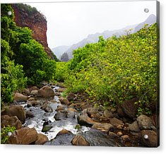 Rainy Day In Canyon Acrylic Print by Kevin Smith