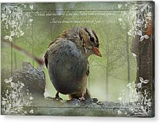 Rainy Day Sparrow With Verse Acrylic Print by Debbie Portwood