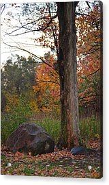 Rainy Fall Day Acrylic Print by Jennifer  King