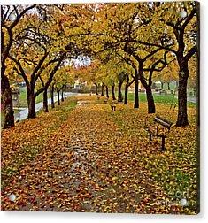 Acrylic Print featuring the photograph Rainy Path by Maria Janicki