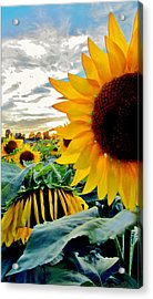 Raisingluminescence Raising Above The Crowd  Acrylic Print