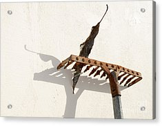 Rake With Leaf Acrylic Print by William Voon