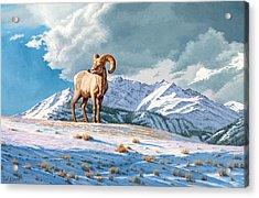 Ram And Electric Peak Acrylic Print