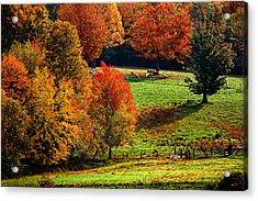 Ramblin' Fall Acrylic Print