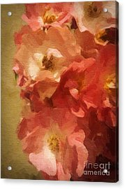 Acrylic Print featuring the digital art Ramblin Rose Memories by Lianne Schneider
