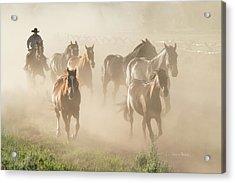 Ranch Horses Acrylic Print by Ramona Murdock