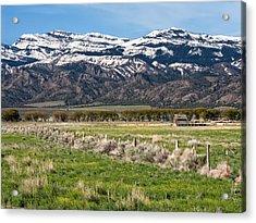 Ranching In Modoc Acrylic Print by Kathleen Bishop