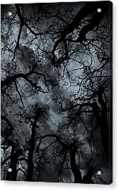 Random Thoughts - Nature Abstract Acrylic Print