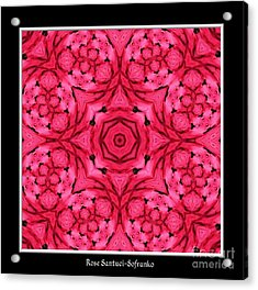 Acrylic Print featuring the photograph Ranunculus Flower Warp by Rose Santuci-Sofranko