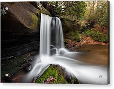 Raper Creek Falls Acrylic Print by Scott Moore