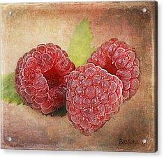 Raspberries  Acrylic Print by Barbara Orenya
