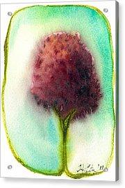 Raspberry Tree Acrylic Print by Hilary Slater