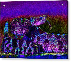 Rattlesnake 20130204m133 Acrylic Print by Wingsdomain Art and Photography