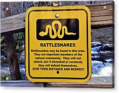 Rattlesnakes Acrylic Print by Susan Leggett