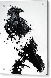 Raven Acrylic Print by Jeremy Scott