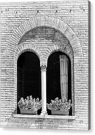 Ravenna Window Mono Acrylic Print