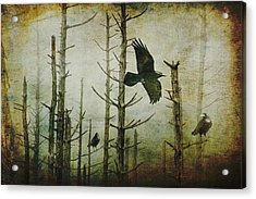 Ravens Of The Mist Artistic Expression Acrylic Print by Randall Nyhof
