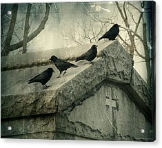 Ravens On A Gray Day Acrylic Print by Gothicrow Images