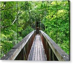 Ravine Bridge 3 Acrylic Print