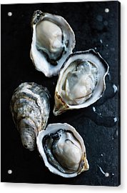 Raw Oysters Acrylic Print by Jack Andersen