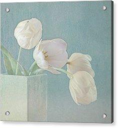 Ray Of Beauty Acrylic Print by Kim Hojnacki