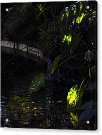 Acrylic Print featuring the photograph Ray Of Hope by Silke Brubaker