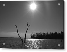 Acrylic Print featuring the photograph Rayburn Sky by Max Mullins