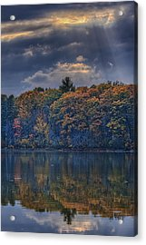 Rayons D'automne Acrylic Print