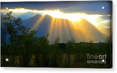 Rays From Heaven Acrylic Print by Michelle Frizzell-Thompson