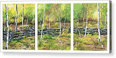 Acrylic Print featuring the painting Ray's Meadow by Jessica Tookey