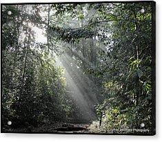Rays Of Sunlight Acrylic Print by Ajithaa Edirimane