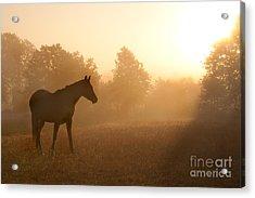 Rays Of Sunrise Acrylic Print