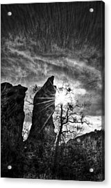 Rays Acrylic Print