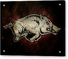 Razorback Bliss Acrylic Print by Russten Johnson