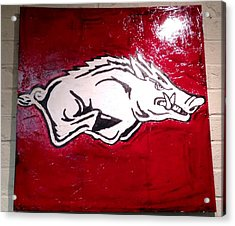 Razorback Painting Art Acrylic Print by Dawn Bearden