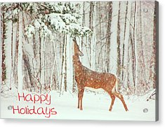 Reach For It Happy Holidays Acrylic Print by Karol Livote