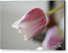 Acrylic Print featuring the photograph Reach  #3 by Lynn England