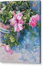 Reaching For Pretty Pink Acrylic Print