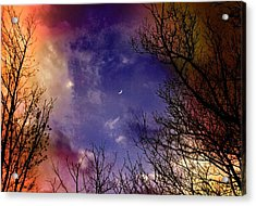 Reaching For The Moon 2 Acrylic Print by Susan Crossman Buscho