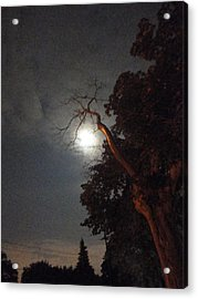 Reaching For The Moon Acrylic Print by Guy Ricketts