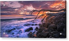 Acrylic Print featuring the photograph Reaching For The Pacific by Hawaii  Fine Art Photography